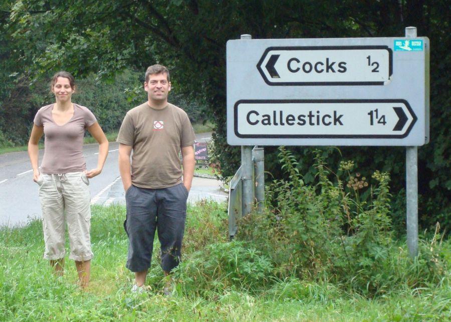 Cocks photo