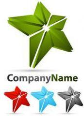 Logo_Star_1_I10 (Custom).jpg