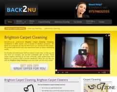 Carpet Cleaning Company Website Design